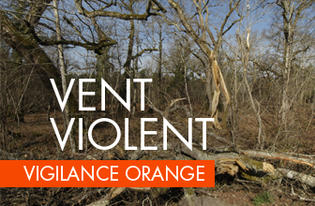 Vigilance orange - Vent violent et fortes pluies point de situation à 10h30