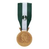 La Medaille D Honneur Regionale Departementale Et Communale Les